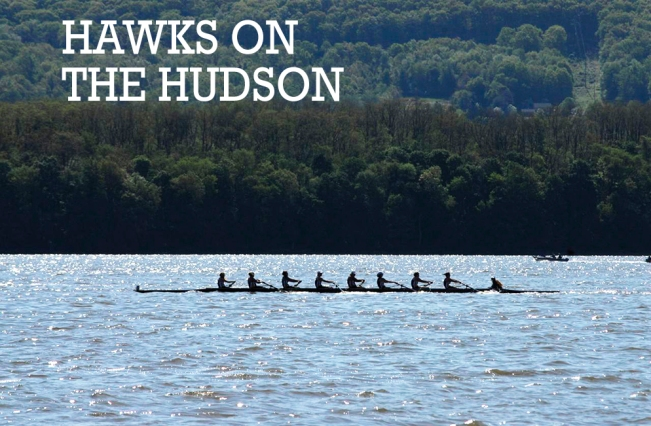 hawksonthehudsontext